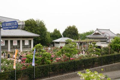 三珠ボタン園