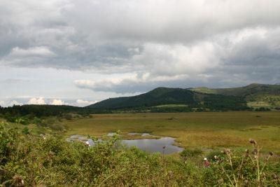 八島湿原②