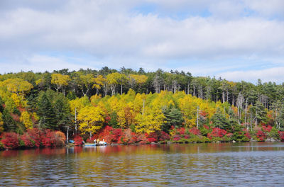 白駒池の紅葉1