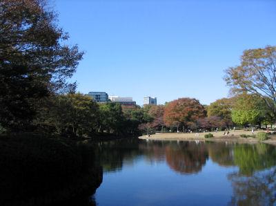 北の丸公園池