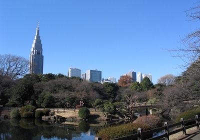 新宿御苑から高層ビル