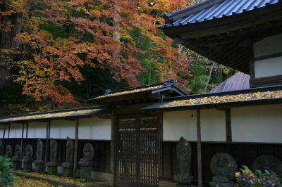 海岸寺の紅葉1
