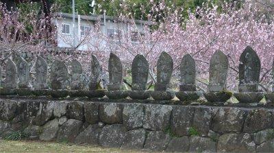 伝嗣院の石仏群