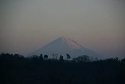 富士(正月)