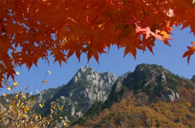 紅葉とみずがき山