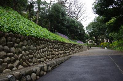 旧岩崎邸庭園アプローチ