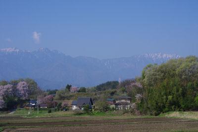 春の下黒沢1