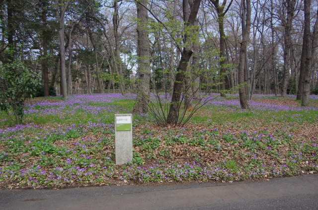江戸東京たてもの園4