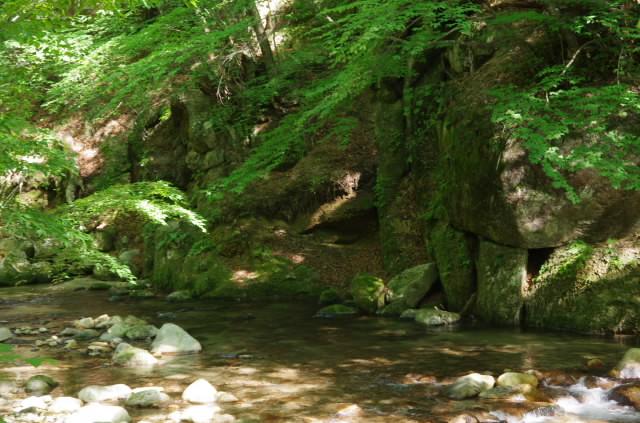 緑の本谷川
