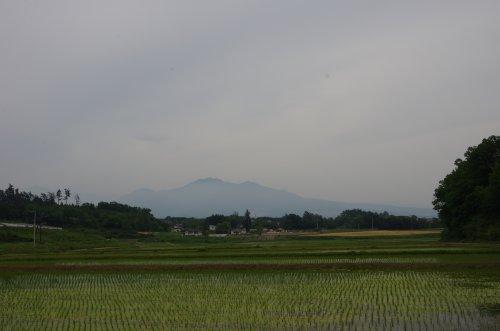 24茅ヶ岳