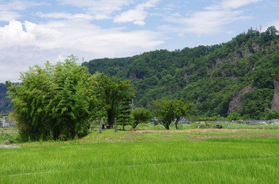 徳島堰09