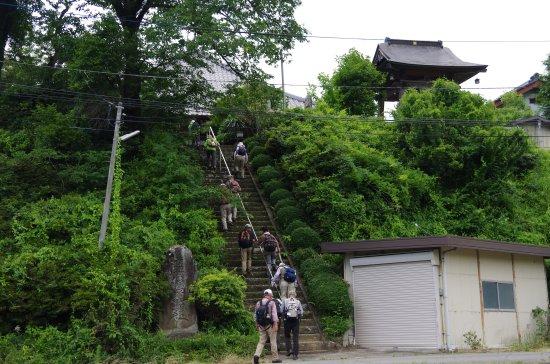 徳島堰15