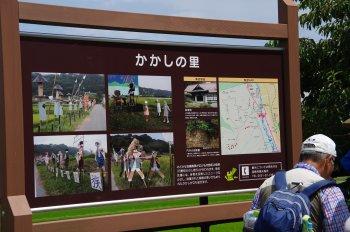徳島堰19