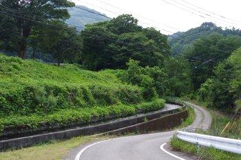 徳島堰20