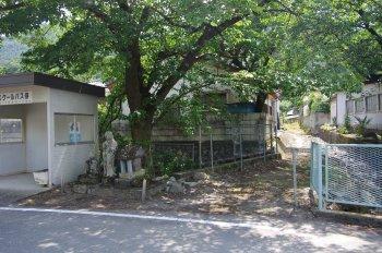 徳島堰22