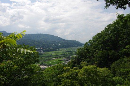 徳島堰31