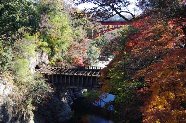 12猿橋渓谷紅葉