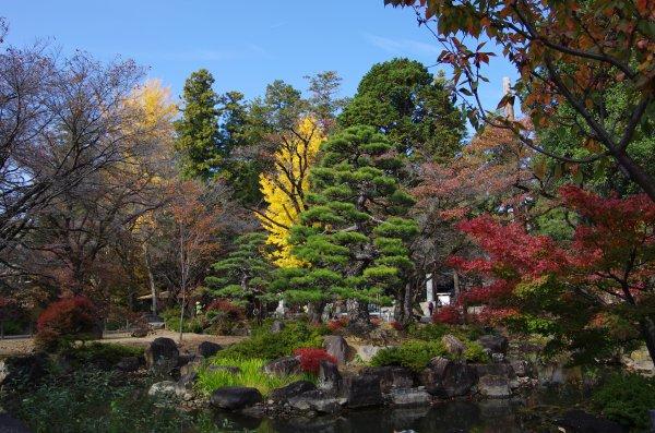 19恵林寺庭園