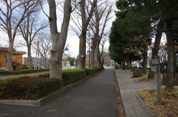 06多摩御陵への道