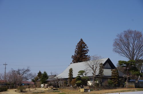 18_大きな家