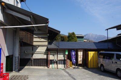 37_武の井酒造1