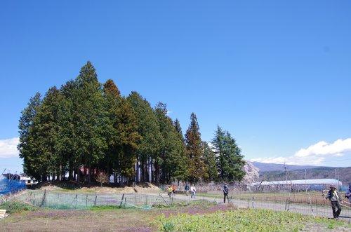 11_諏訪神社