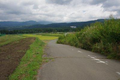 15_信玄棒道