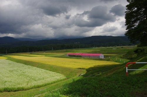 18_田園風景