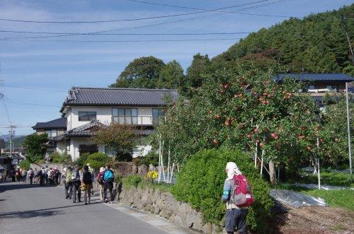 26_家の前にリンゴ