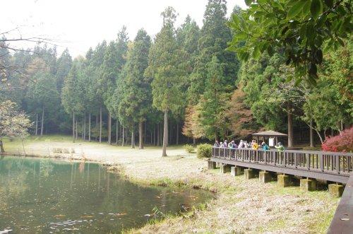11_菖蒲池湖畔