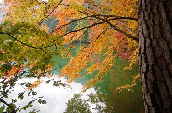 6_南北伊奈ヶ湖紅葉