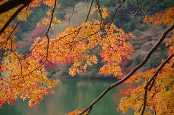 7_南北伊奈ヶ湖紅葉2